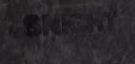Пасхалки в BioShock Infinite